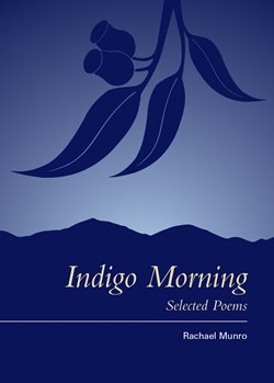 indigo morning