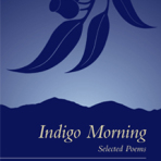 Indigo Morning by Rachel Munro